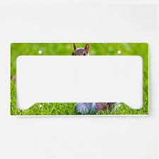 cute squirrel License Plate Holder