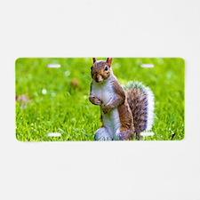 cute squirrel Aluminum License Plate
