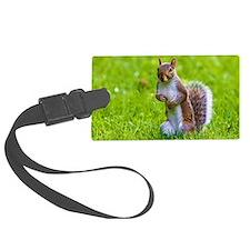 cute squirrel Luggage Tag