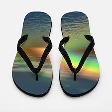Rainbow 005 Flip Flops