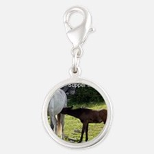 Supper Time, Ireland Silver Round Charm