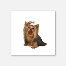 """Yorkshire Terrier (#7) Square Sticker 3"""" x 3"""""""