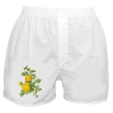 Vintage Yellow Roses by Redoute Boxer Shorts