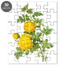 Vintage Yellow Roses by Redoute Puzzle