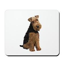 Welsh Terrier #1 Mousepad