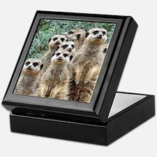 Meerkat012 Keepsake Box