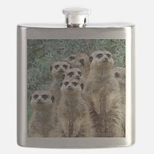 Meerkat012 Flask