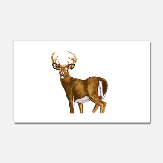 White Tail Deer Buck Car Magnet 20 x 12