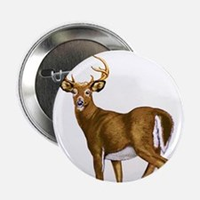 "White Tail Deer Buck 2.25"" Button (10 pack)"