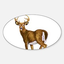White Tail Deer Buck Decal