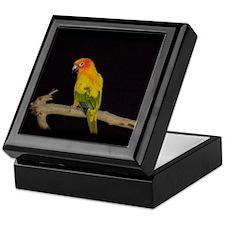 Funny Sun conure parrot Keepsake Box