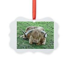 Hamish Ornament