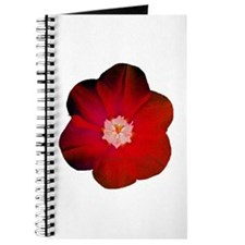 red flower Journal