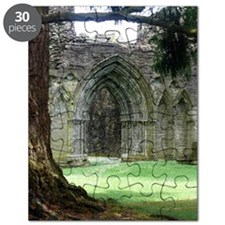 Inchmahome Priory Puzzle