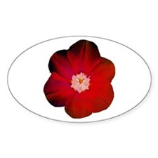 red flower Oval Decal