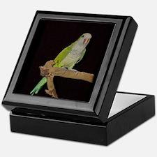 Funny Quaker parrots Keepsake Box