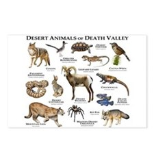 Animals of Death Valley Postcards (Package of 8)