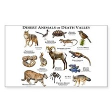 Animals of Death Valley Decal
