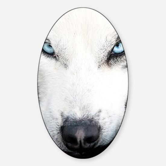 Blue Eyed Husky Sticker (Oval)