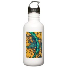 Particle tracks Sports Water Bottle