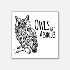 """Owls Are Assholes Square Sticker 3"""" x 3"""""""