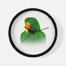 Male Eclectus.jpg Wall Clock