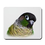 Parrot Mouse Pads