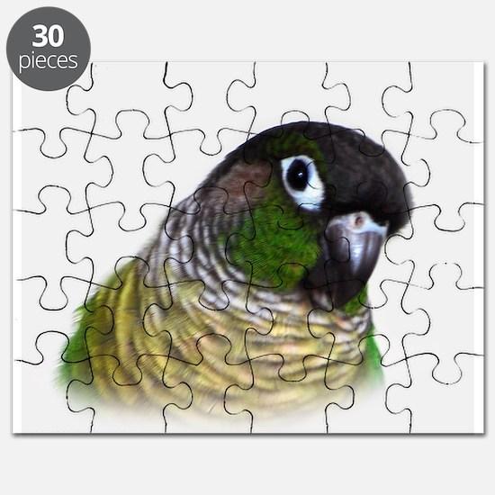 Green Cheek Conure.jpg Puzzle