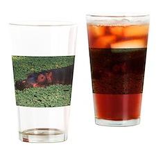 hippopotamus, Drinking Glass