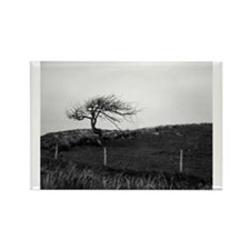 Lonely tree Rectangle Magnet
