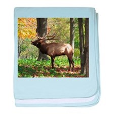 Elk bellowing baby blanket