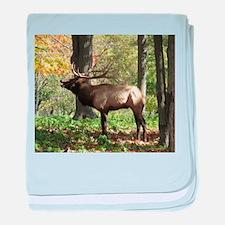 Elk bellowing baby blanket