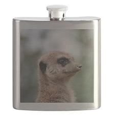 Meerkat015 Flask