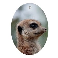 Meerkat015 Oval Ornament