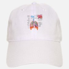 Respiratory system complete Baseball Baseball Baseball Cap
