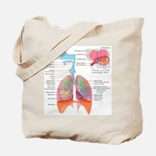 Respiratory system complete Tote Bag