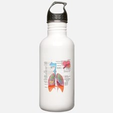 Respiratory system complete Water Bottle