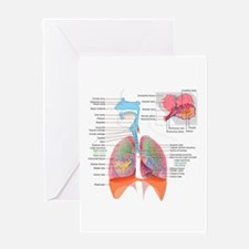 Respiratory system complete Greeting Cards