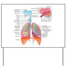 Respiratory system complete Yard Sign