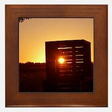 Sunrises and Sunsets Framed Tile