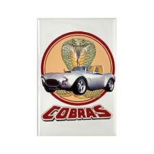 COBRAS Rectangle Magnet