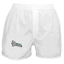 Spaceship Zero Boxer Shorts