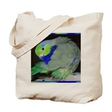 Pacific Parrotlet Tote Bag