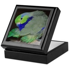Pacific Parrotlet Keepsake Box