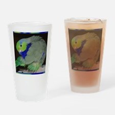 Pacific Parrotlet Drinking Glass