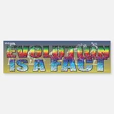 Evolution Is A Fact Bumper Bumper Bumper Sticker