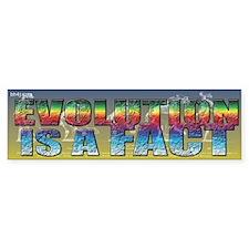 Evolution Is A Fact Bumper Bumper Sticker
