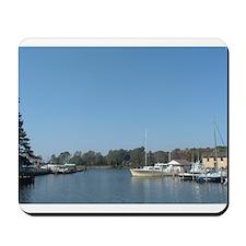 Safe Harbor Mousepad