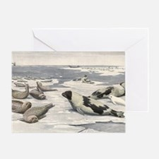 Vintage Marine Life, Seals Greeting Card