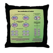 Genetics of meiosis Throw Pillow
